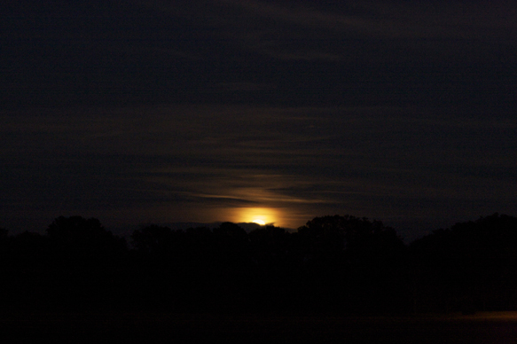 Poorly photographed full moon over Alachua, 02/09/2009